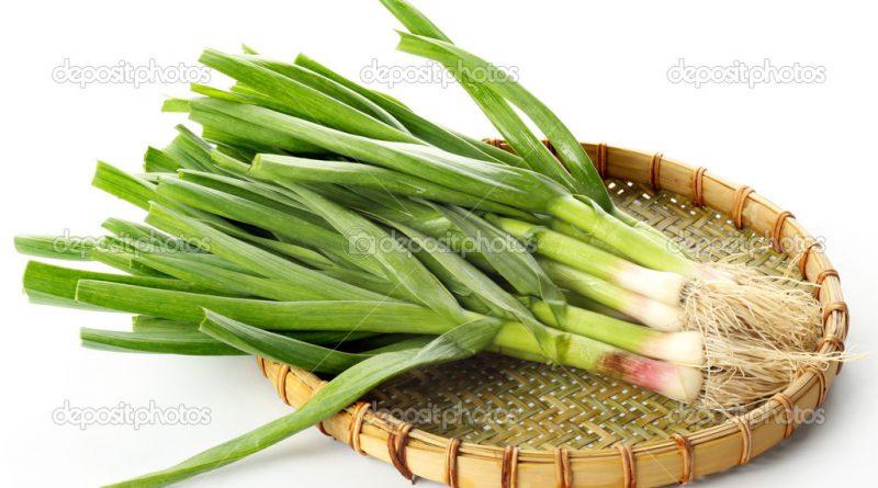 depositphotos_44013441-garlic-leaves