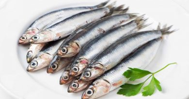 1679-italian-food-sardines-recipes-sardines-pasta-sardines-raisins-pine-nuts-and-fennel