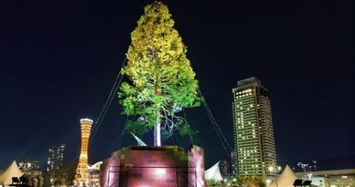 The-world-tallest-christmas-tree-in-Kobe-720x405