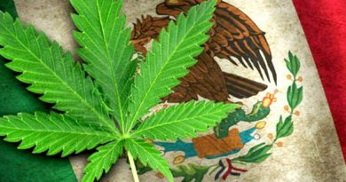 Mexico-wants-to-legalize-marijuana-at-the-resorts-750x400