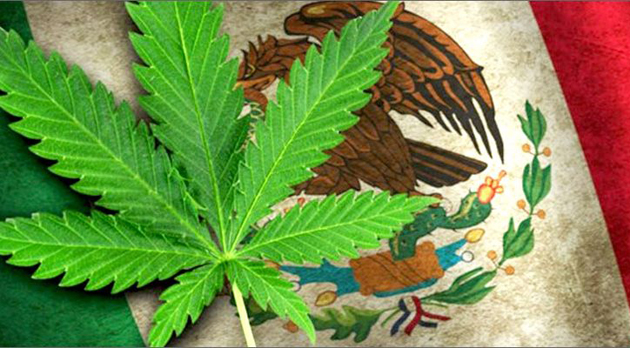 Mexico-wants-to-legalize-marijuana-at-the-resorts-750x400