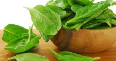 Чем-полезен-салат-листовой-600x425 (1)