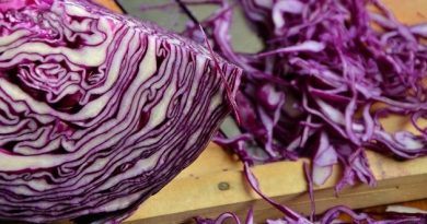 1600596894_red-cabbage-1931731_1280