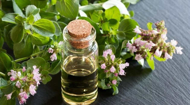 oregano_essential_oil_on_wooden_table_with_plants.thumb